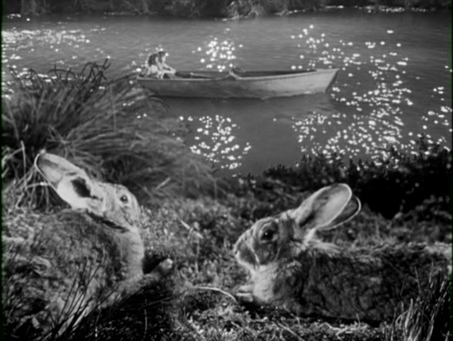The Night of the Hunter (1955) | Celluloid Heaven